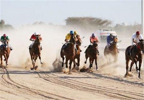 حکم شرط بندی مسابقات اسب دوانی