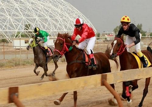 شرط بندی در مسابقات اسب سواری